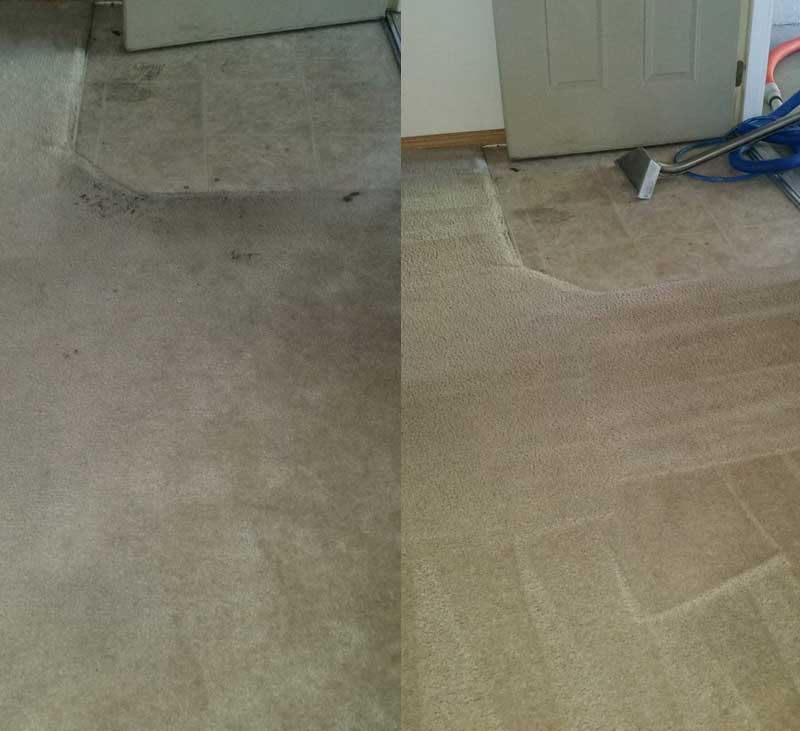 Professional Cleaning Services in Meridian